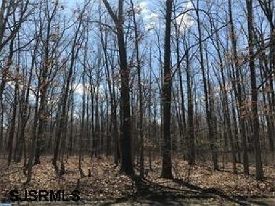 Franklinville Residential Lots & Land For Sale: L27 Proposed