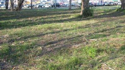 Vineland Residential Lots & Land For Sale: 1032 N Delsea Dr