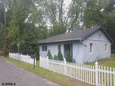 Millville Single Family Home For Sale: 236 Nymph Road