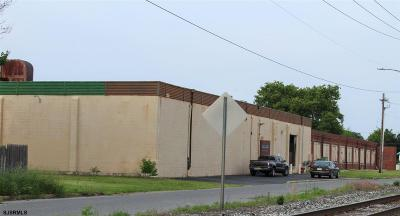 Vineland Commercial For Sale: 217 W Peach St Street