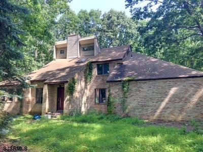 Newfield Single Family Home For Sale: 513 Morris Ave