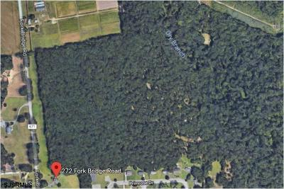 Pittsgrove Township Residential Lots & Land For Sale: Fork Bridge Road