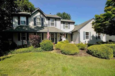 Millville Single Family Home For Sale: 443 Val Ln Ln