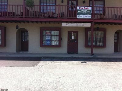 Vineland Condo/Townhouse For Sale: 12 Lasalle Dr #12