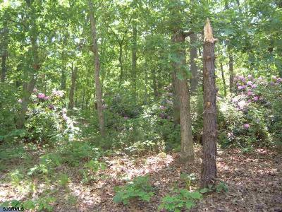 Millville Residential Lots & Land For Sale: 1113 Earle Ave