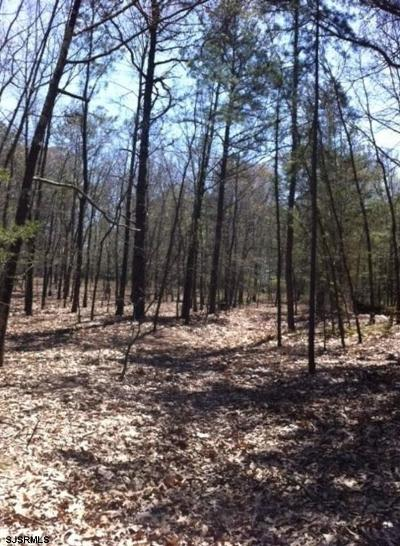 Franklinville Residential Lots & Land For Sale: 1171 Marshall Mill Rd Road