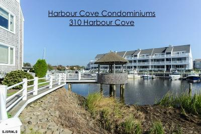 Somers Point Condo/Townhouse For Sale: 310 Harbour Cove #310