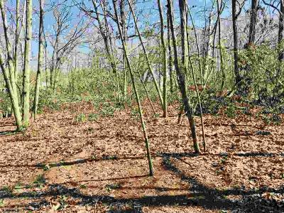 Millville Residential Lots & Land For Sale: 6506 Battle Ln