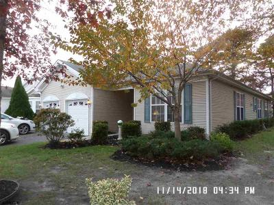 Smithville Single Family Home For Sale: 101 Paget Way