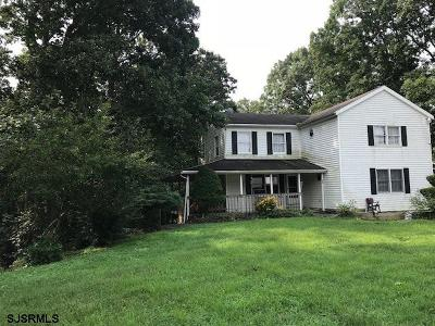 Upper Deerfield Township Single Family Home For Sale: 678 Irving Ave