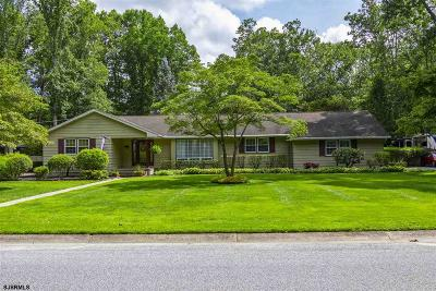 Millville Single Family Home For Sale: 2241 Shamrock Ln Ln