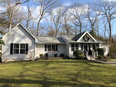 Northfield Single Family Home For Sale: 2272 Burroughs Ave