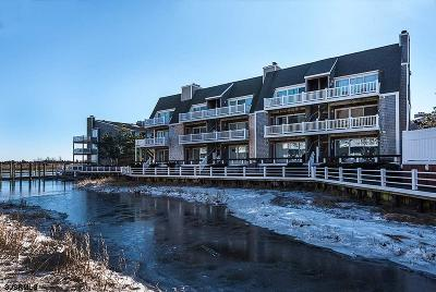 Somers Point Condo/Townhouse Undercontract-Cont Toshow: 1704 Harbour Cv #1704