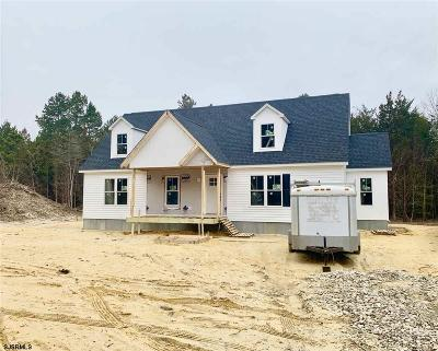 Upper Township Single Family Home For Sale: 565 Route 50