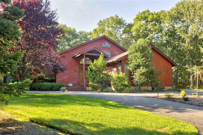 Galloway Township Single Family Home For Sale: 513 S Seaview Ave
