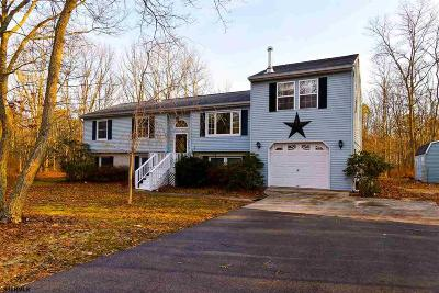 Galloway Township Single Family Home For Sale: 803 Berrywood Lane