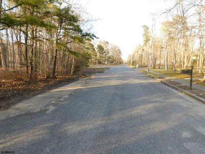 Residential Lots & Land For Sale: 240 To 250 Alder Ave