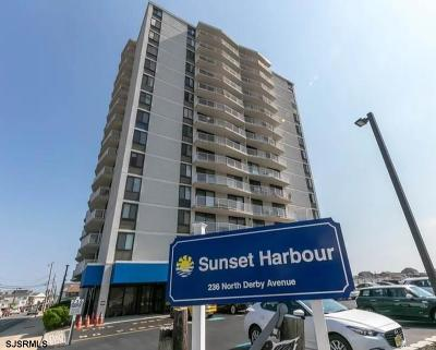 Atlantic County Condo/Townhouse For Sale: 236 N Derby Unit 902 Ave #902