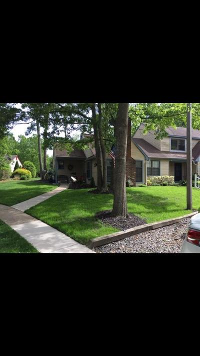 Smithville Single Family Home For Sale: 752 E Cooper Ferry Ct
