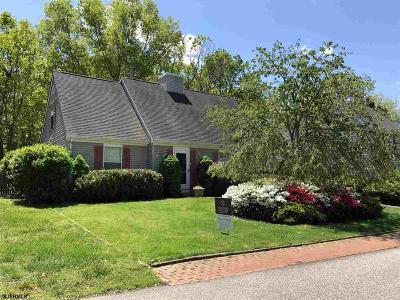 Smithville Single Family Home For Sale: 534 Revere