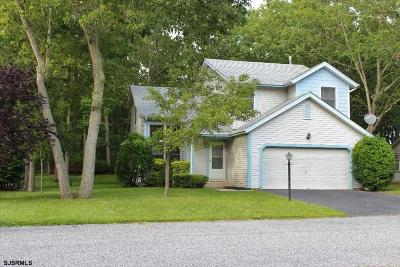 Smithville Single Family Home For Sale: 553 Stonewall Dr