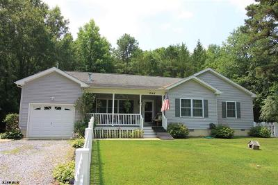 Upper Township Single Family Home For Sale: 296 Route 49