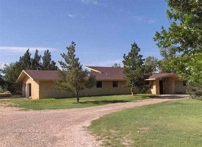 Hobbs NM Single Family Home For Sale: $675,000