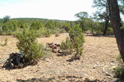 Residential Lots & Land For Sale: Maddox Rd Lot 51