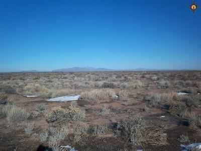 Deming NM Residential Lots & Land For Sale: $2,000