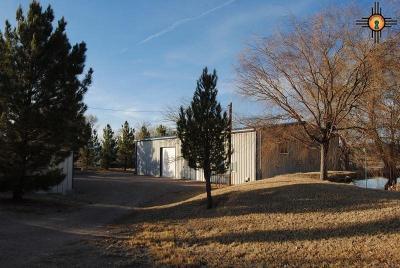 Sierra County Single Family Home For Sale: 119 Trujillo Creek Road