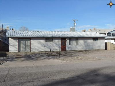 Deming Multi Family Home For Sale: 417 &4171/2 W Holly
