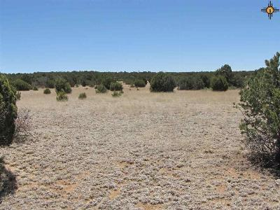 Las Vegas Residential Lots & Land For Sale: 200 Apache Mesa Road