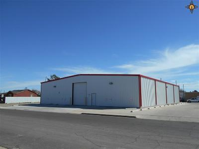 Hobbs NM Commercial For Sale: $425,000