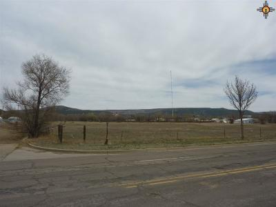 Commercial For Sale: 150 Tiger Drive