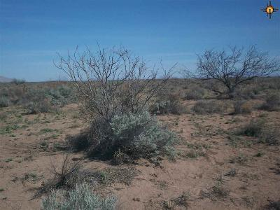 Deming NM Residential Lots & Land For Sale: $1,500