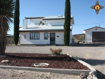 Sierra County Single Family Home For Sale: 302 Michigan