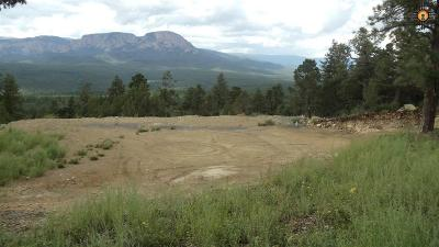 Residential Lots & Land For Sale: 456 Lower Canyon Rd