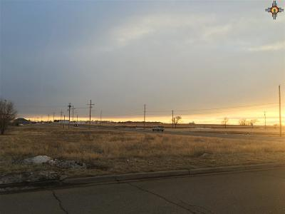 Clovis NM Residential Lots & Land Sold-In House: $10,000