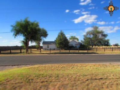 Portales Single Family Home For Sale: 309 E Spruce