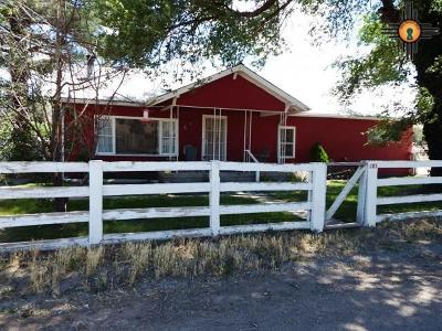 Catron County Single Family Home For Sale: 48a The Lane