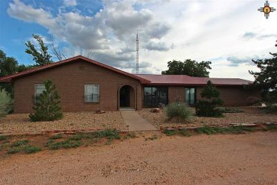 Clovis NM Single Family Home Sold-Co-Op W/Mls Member: $255,000