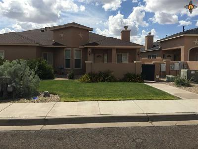 Hobbs NM Condo/Townhouse Sold-Co-Op W/Mls Member: $178,000