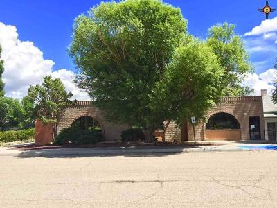 Commercial For Sale: 411 S 3rd