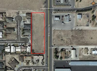 Hobbs NM Commercial Lots & Land For Sale: $400,000