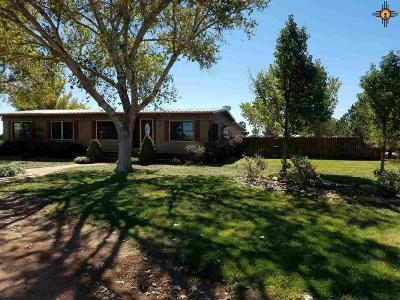 Melrose NM Manufactured Home For Sale: $169,000
