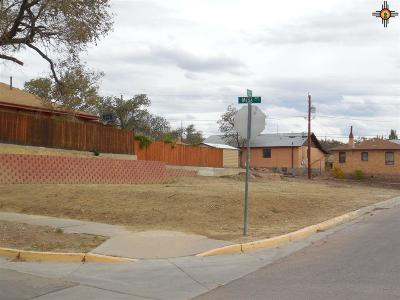 Residential Lots & Land Sold: 505 S First