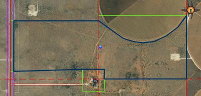 Hobbs NM Residential Lots & Land For Sale: $1,200,000