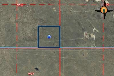 Hobbs NM Commercial Lots & Land For Sale: $1,000,000