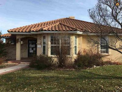 Clovis NM Single Family Home Sold-Co-Op W/Mls Member: $208,000