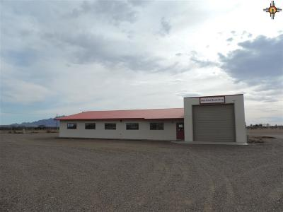 Commercial For Sale: 70 SW Dona Ana Rd